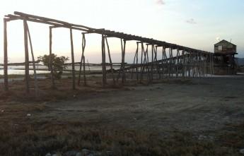 Salt Plantation